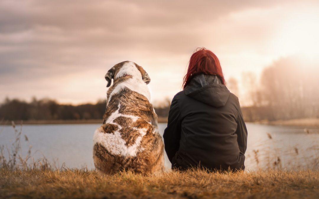 Frau und Hund am Wasser