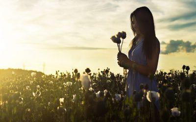 Wie Dankbarkeit dein Leben zum Erblühen bringt