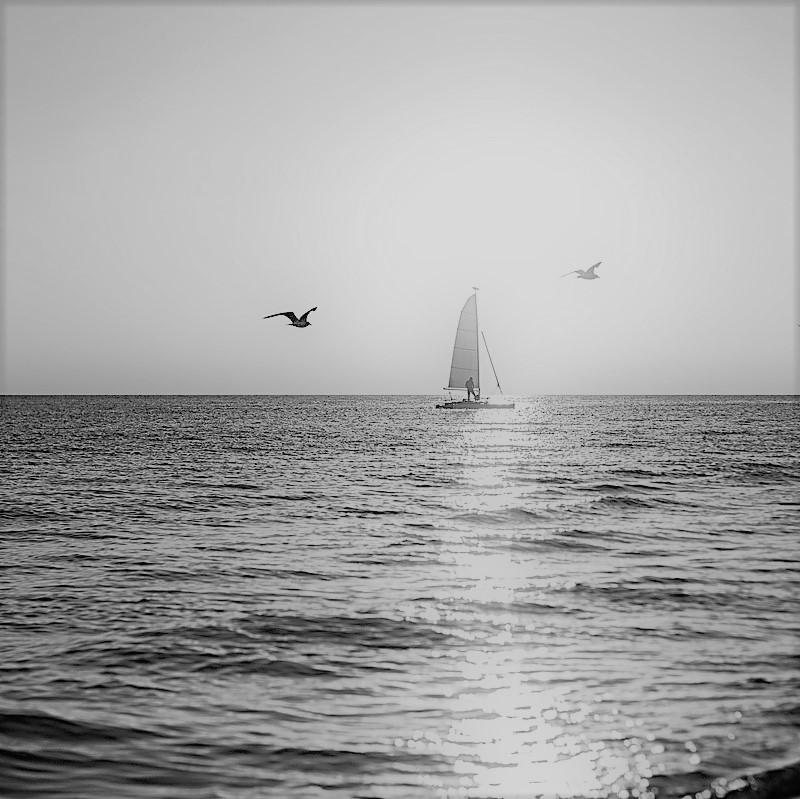 Segelboot mit Möven ls Sinnbild für einen Motivationsspruch